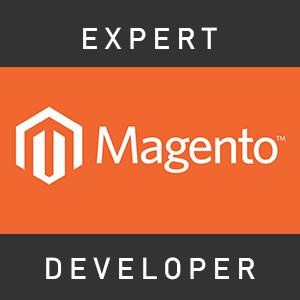 Expert Magento Developer