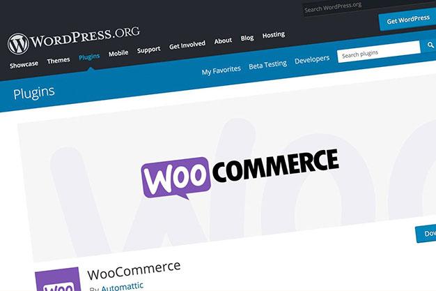 WooCommerce Custom Solutions